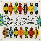 I've Got a Hole Where My Heart Should Be by The Sheepdogs