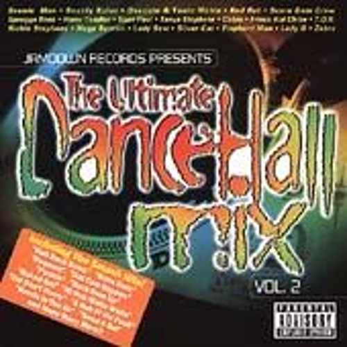 The Ultimate Dancehall Mix Vol. 2 by Various Artists