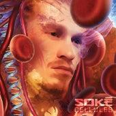 Cellules de Soké
