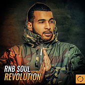Rnb Soul Revolution by Various Artists