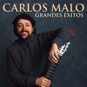 Grandes Éxitos by Carlos Malo