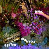 Unk di Sister Mantos