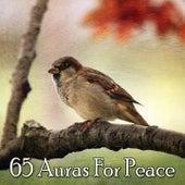 65 Auras For Peace de Meditación Música Ambiente