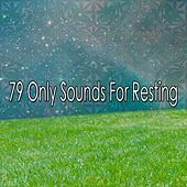 79 Only Sounds For Resting by Deep Sleep Music Academy