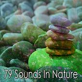 79 Sounds In Nature de Nature Sounds Artists