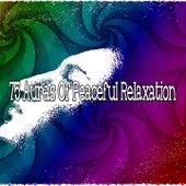 75 Auras Of Peaceful Relaxation de Best Relaxing SPA Music