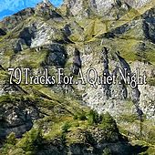 79 Tracks For A Quiet Night by Bedtime Baby