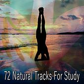 72 Natural Tracks For Study by Classical Study Music (1)