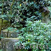 74 Yoga Tracks by Yoga Workout Music (1)