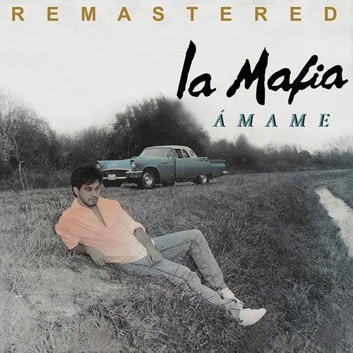 Ámame (Remastered) by La Mafia