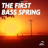 The First Bass Spring - EP by Various Artists