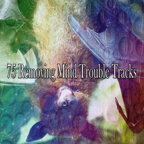 75 Removing Mind Trouble Tracks de Relajacion Del Mar