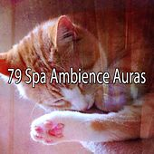 79 Spa Ambience Auras by S.P.A