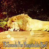 78 Sounds For Hospitable Bed de Ocean Sounds Collection (1)