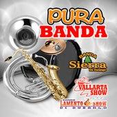 Pura Banda by Various Artists