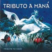 Tribute to Mana: Tributo a Mana by Rocio Jurado