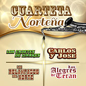 Cuarteta Nortena by Various Artists