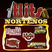 Hits Nortenos by Various Artists