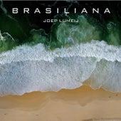 Brasiliana de Joep Lumeij