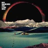 Holy Mountain von Noel Gallagher's High Flying Birds