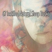 67 Instilled Natural Sleep Tracks de White Noise Babies