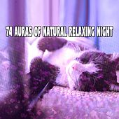 74 Auras Of Natural Relaxing Night by Ocean Sounds Collection (1)
