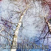 75 Tracks For Kids Bed Rest by White Noise For Baby Sleep