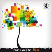 Tanzwiese 024 von Various Artists