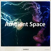 Ambient Space by Various Artists