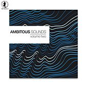 Ambitious Sounds, Vol. 2 - The Deep Side of Tech-House di Various Artists