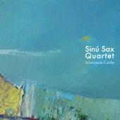 Itinerancia Caribe de Sinu Sax Quartet