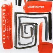 Empire Down de David Harrod