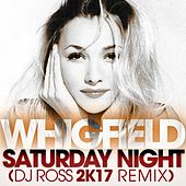 Saturday Night (DJ Ross 2K17 Remix) von Whigfield