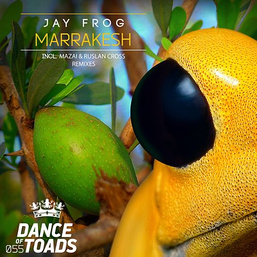 Marrakesh Remixes 2 by Jay Frog