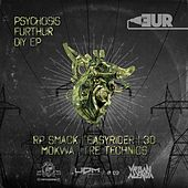 Psychosis Furthur DIY - Single by Various Artists