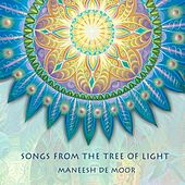 Songs from the Tree of Light by Maneesh de Moor