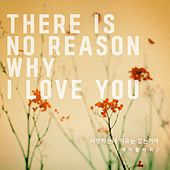 There Is No Reason Why I Love You by K. Flower