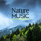 Nature Music – Deep Relax Lounge, Sounds of Nature, Calm of Mind, Relaxing Music, Healing Songs by Nature Sounds (1)