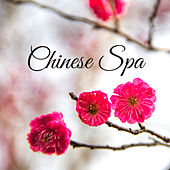 Chinese Spa – Asian Zen, Massage Therapy, Oriental Spa & Wellness, Stress Relief, Soothing Melodies de Zen Meditation and Natural White Noise and New Age Deep Massage