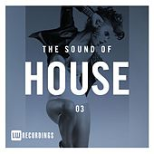 The Sound Of House, Vol. 03 - EP de Various Artists