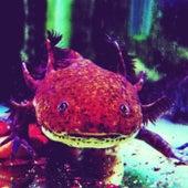 Dogheaded Monster by Axolotl
