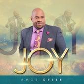 Joy (Live) by Amos Greer