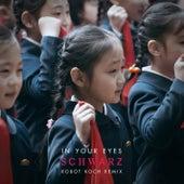 In Your Eyes (Robot Koch Remix) by Schwarz