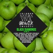 Black Diamonds, Vol. 10 by Various Artists