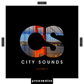 City Sounds, Vol. 2 by Various Artists