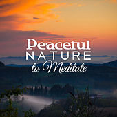 Peaceful Nature to Meditate – Healing Therapy, Meditation Sounds to Calm Down, Nature Relaxation, Time to Rest, Mind Calmness by Echoes of Nature