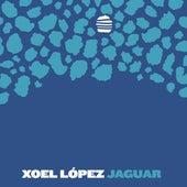 Jaguar by Xoel López