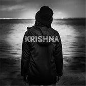Into My World by Krishna