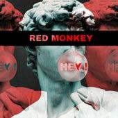 Hey by Red Monkey