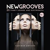 New Grooves, Vol. 2 (25 Funky Lounge & Electronica) by Various Artists
